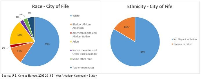 Race and Ethnicity Pie Graphs for the City of Fife